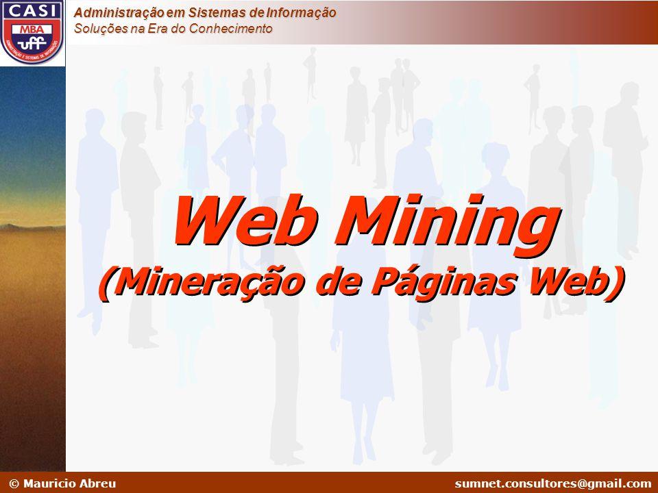 sumnet@microlink.com.br © Mauricio Abreusumnet.consultores@gmail.com Administração em Sistemas de Informação Soluções na Era do Conhecimento Web Minin