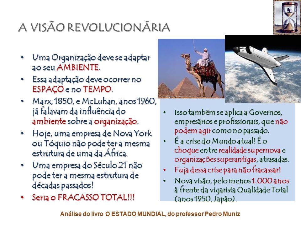 A NOVA VISÃO ORGANIZACIONAL PARA MUDAR NOSSO MUNDO
