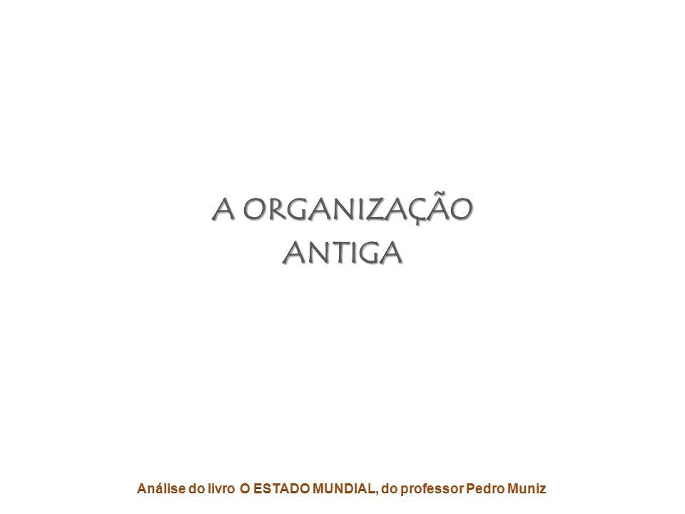 A VISÃO REVOLUCIONÁRIA • Uma Organização deve se adaptar ao seu AMBIENTE.