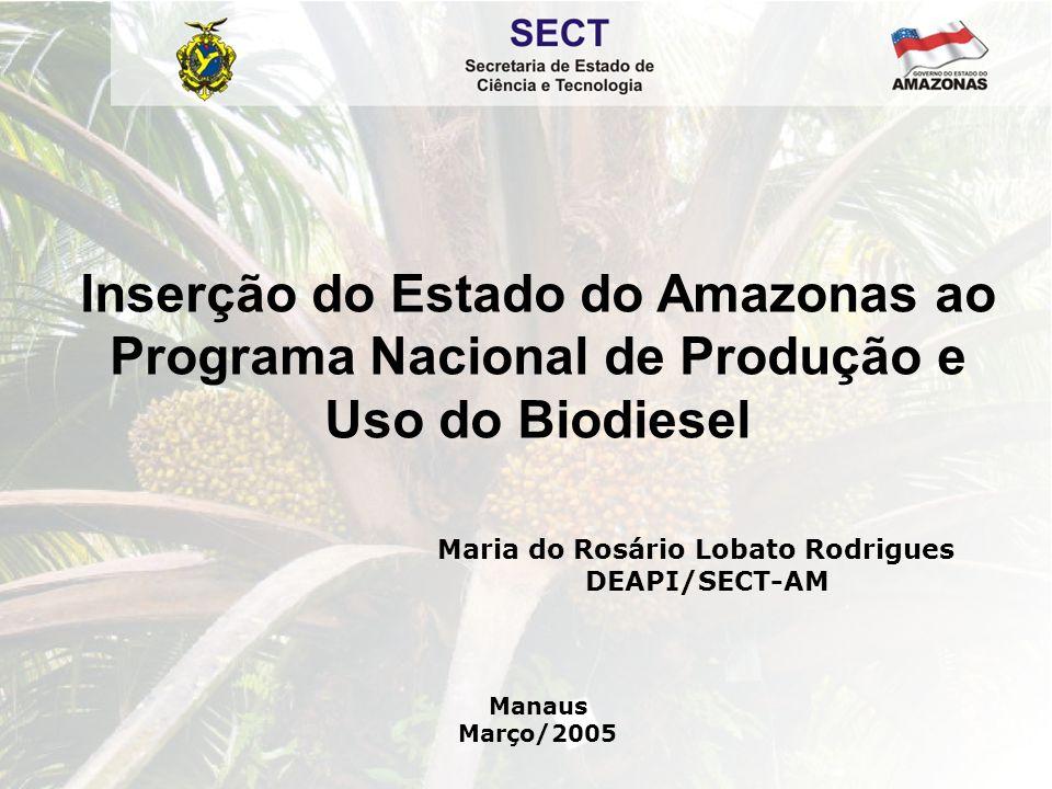 PROGRAMA ESTADUAL DE BIODIESEL DO AMAZONAS  Integrar o Estado do Amazonas ao Programa Nacional de Produção e Uso de Biodiesel e à Rede Brasileira de Tecnologia de Biodiesel;  Contribuir para desenvolver tecnologias alternativas de produção e de uso de biodiesel, visando a auto- sustentabilidade energética das cidades interioranas do Estado do Amazonas, como mecanismo de inclusão social e desenvolvimento regional.