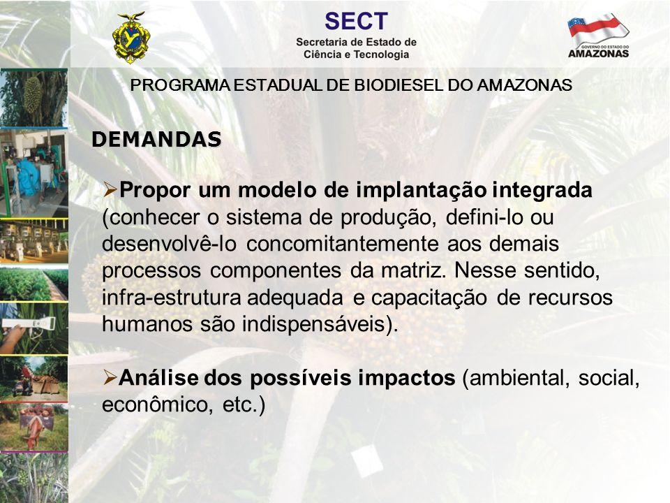 PROGRAMA ESTADUAL DE BIODIESEL DO AMAZONAS  Propor um modelo de implantação integrada (conhecer o sistema de produção, defini-lo ou desenvolvê-lo concomitantemente aos demais processos componentes da matriz.