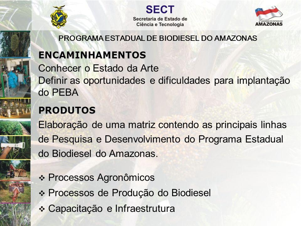 PROGRAMA ESTADUAL DE BIODIESEL DO AMAZONAS Elaboração de uma matriz contendo as principais linhas de Pesquisa e Desenvolvimento do Programa Estadual d
