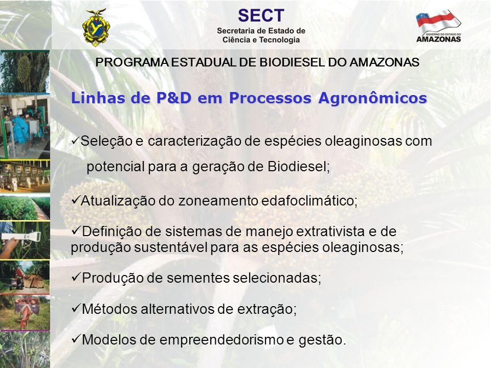 PROGRAMA ESTADUAL DE BIODIESEL DO AMAZONAS  Seleção e caracterização de espécies oleaginosas com potencial para a geração de Biodiesel;  Atualização