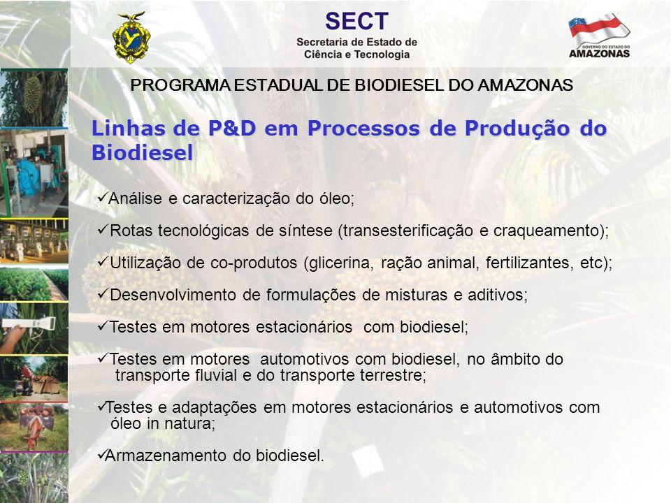 PROGRAMA ESTADUAL DE BIODIESEL DO AMAZONAS  Análise e caracterização do óleo;  Rotas tecnológicas de síntese (transesterificação e craqueamento); 