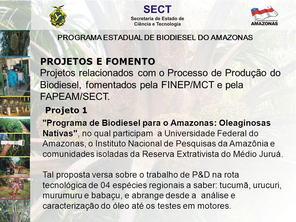PROGRAMA ESTADUAL DE BIODIESEL DO AMAZONAS Programa de Biodiesel para o Amazonas: Dendê , no qual participam a Empresa Brasileira de Pesquisa Agropecuária, o Instituto de Tecnologia da Amazônia (EST/UEA), a Universidade Federal do Amazonas, o Instituto Militar de Engenharia, a Fundação Centro de Análise, Pesquisa e Inovação Tecnológica, o Instituto Nacional de Pesquisas da Amazônia.