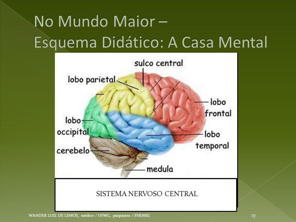 WANDER LUIZ DE LEMOS, médico / UFMG, psiquiatra / FHEMIG 17 SISTEMA NERVOSO CENTRAL