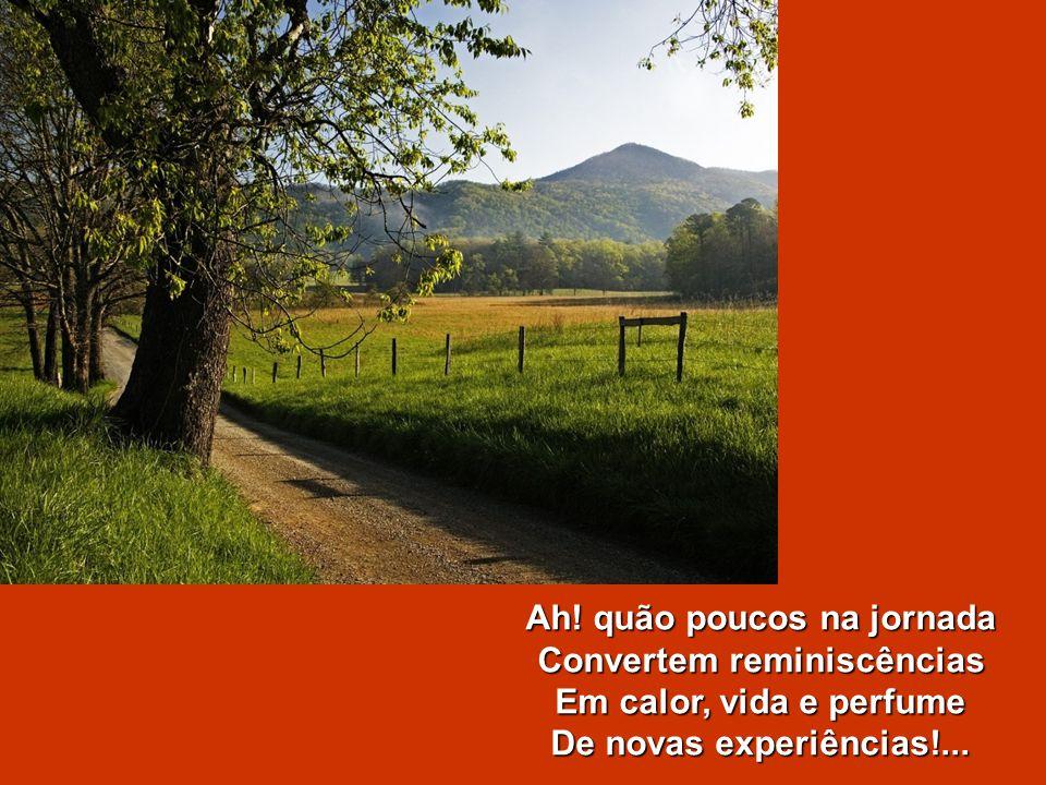 Se viveu rindo e cantando, Entre seivas e prazeres, Com os mesmos encantamentos, Cumpre os últimos deveres.