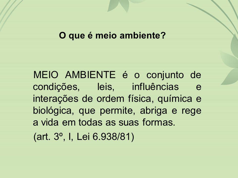 MEIO AMBIENTE é o conjunto de condições, leis, influências e interações de ordem física, química e biológica, que permite, abriga e rege a vida em todas as suas formas.