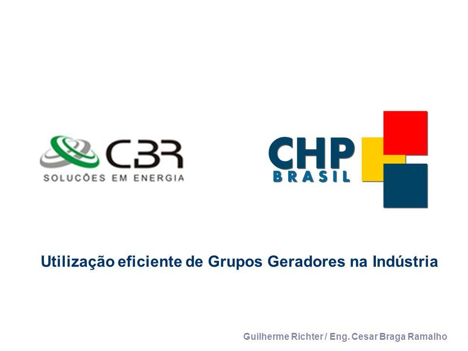 Utilização eficiente de Grupos Geradores na Indústria Guilherme Richter / Eng. Cesar Braga Ramalho