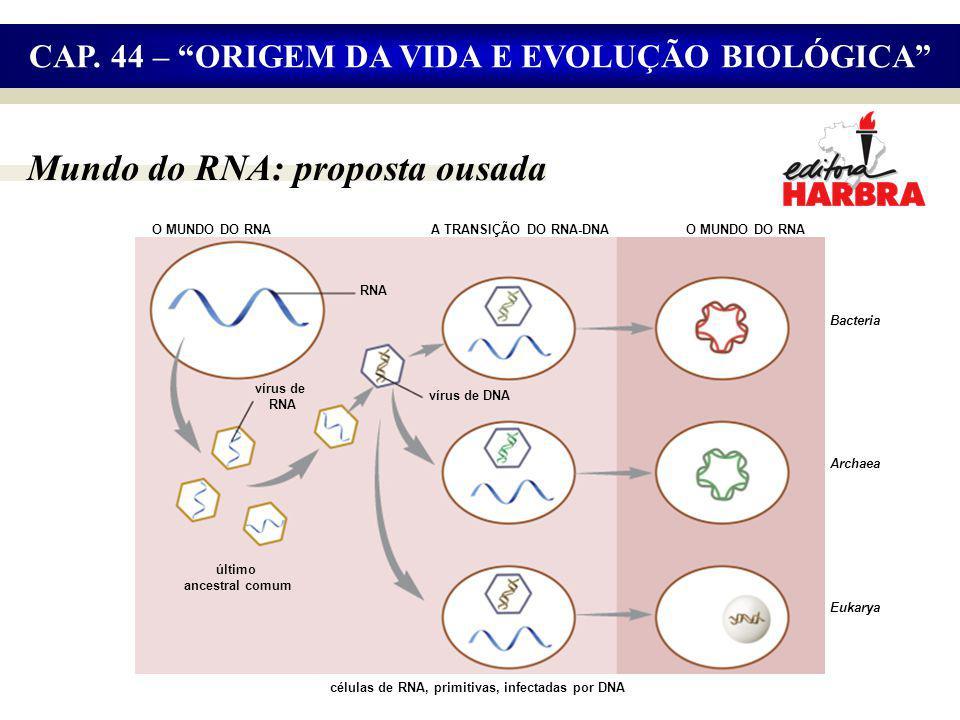 Mundo do RNA: proposta ousada O MUNDO DO RNA RNA vírus de RNA células de RNA, primitivas, infectadas por DNA vírus de DNA último ancestral comum O MUNDO DO RNA Bacteria Archaea A TRANSIÇÃO DO RNA-DNA Eukarya CAP.