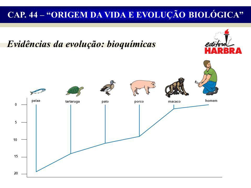 Evidências da evolução: bioquímicas CAP.