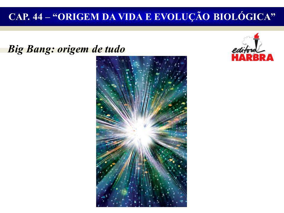 CAP. 44 – ORIGEM DA VIDA E EVOLUÇÃO BIOLÓGICA Big Bang: origem de tudo