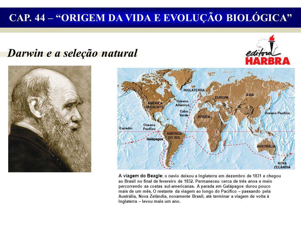 Darwin e a seleção natural CAP.