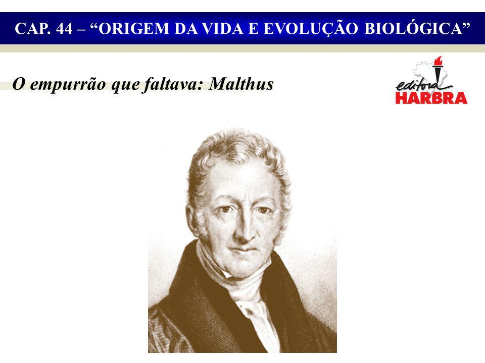 O empurrão que faltava: Malthus CAP. 44 – ORIGEM DA VIDA E EVOLUÇÃO BIOLÓGICA