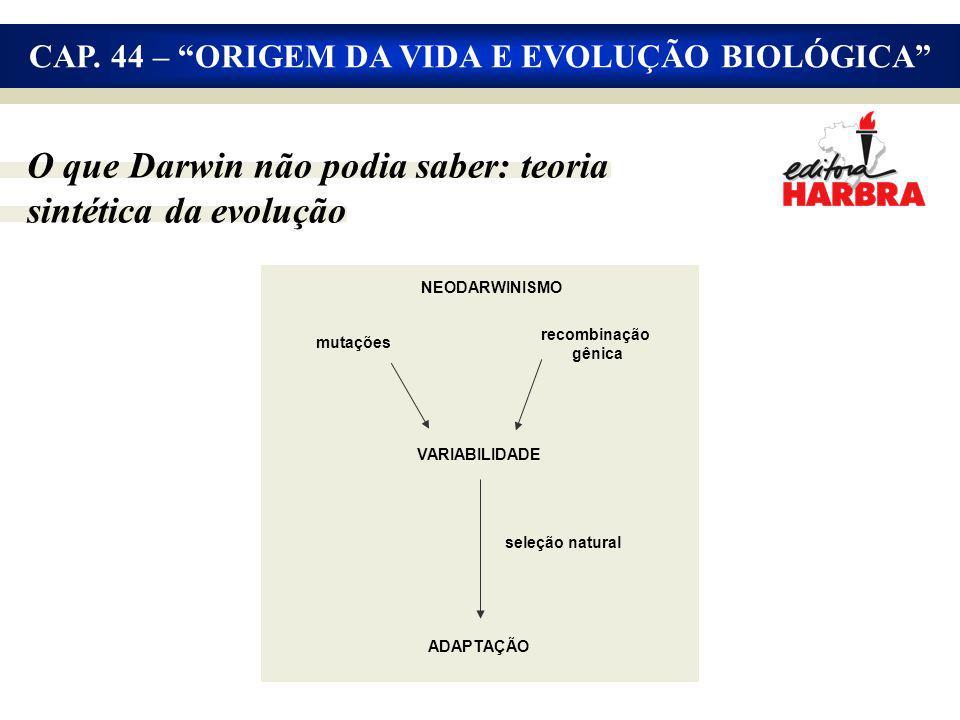 O que Darwin não podia saber: teoria sintética da evolução NEODARWINISMO mutações recombinação gênica VARIABILIDADE seleção natural ADAPTAÇÃO