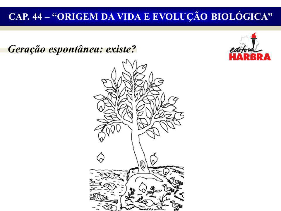 Geração espontânea: existe? CAP. 44 – ORIGEM DA VIDA E EVOLUÇÃO BIOLÓGICA