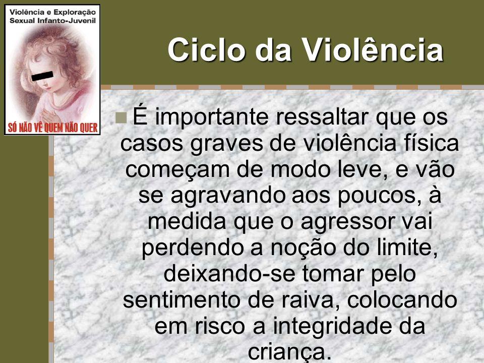 Ciclo da Violência  É importante ressaltar que os casos graves de violência física começam de modo leve, e vão se agravando aos poucos, à medida que