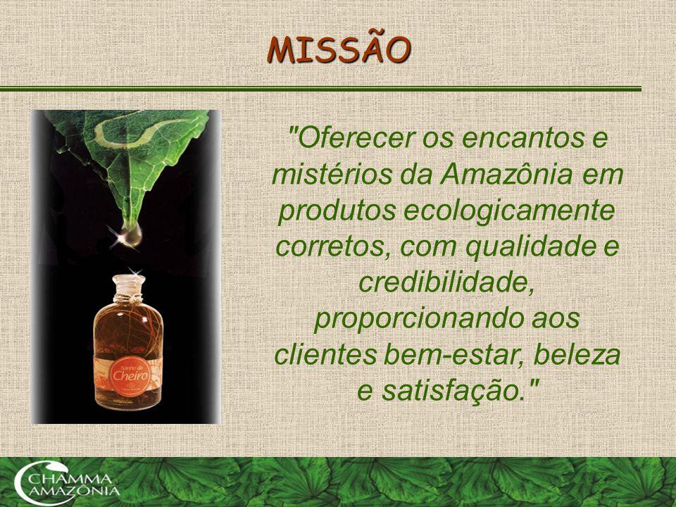 Amazônia Conceito