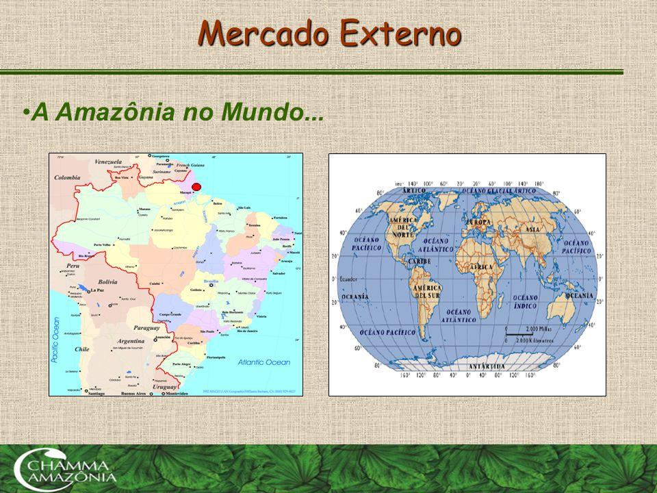 Mercado Externo •A Amazônia no Mundo...