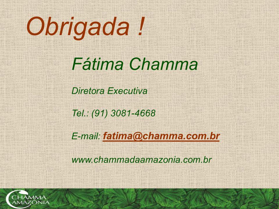 Fátima Chamma Diretora Executiva Tel.: (91) 3081-4668 E-mail: fatima@chamma.com.br www.chammadaamazonia.com.br Obrigada !