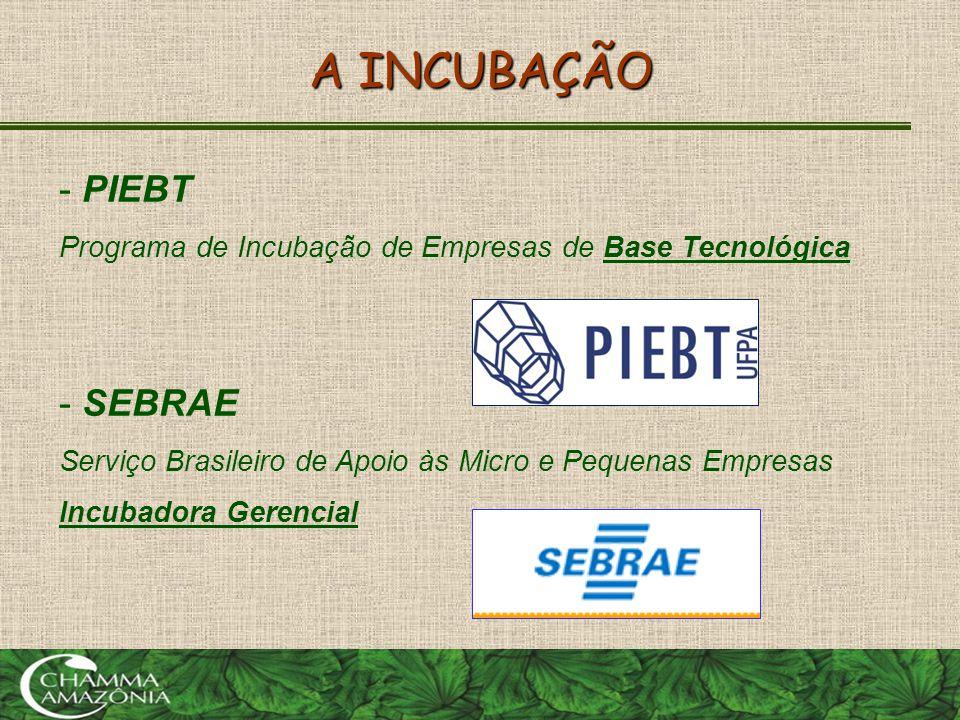 A INCUBAÇÃO - PIEBT Programa de Incubação de Empresas de Base Tecnológica - SEBRAE Serviço Brasileiro de Apoio às Micro e Pequenas Empresas Incubadora