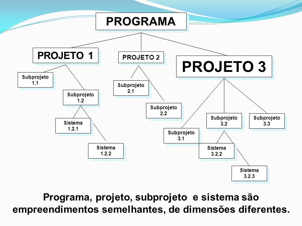 Programa, projeto, subprojeto e sistema são empreendimentos semelhantes, de dimensões diferentes. PROJETO 1 PROJETO 2 PROJETO 3 Subprojeto 1.1 Subproj