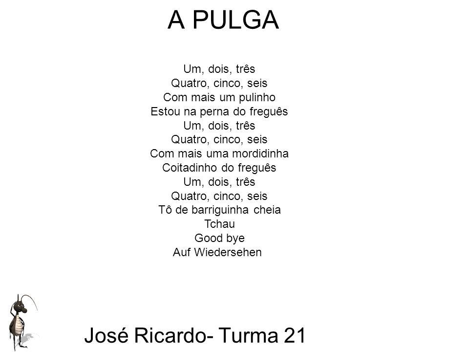 José Ricardo - Turma 21