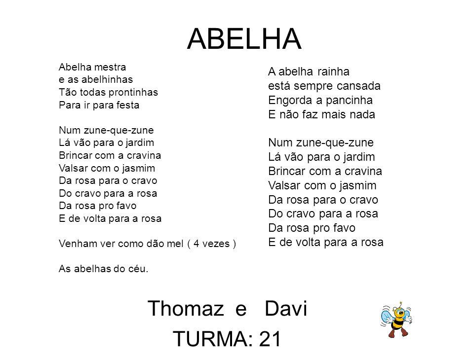 Thomaz e Davi TURMA: 21