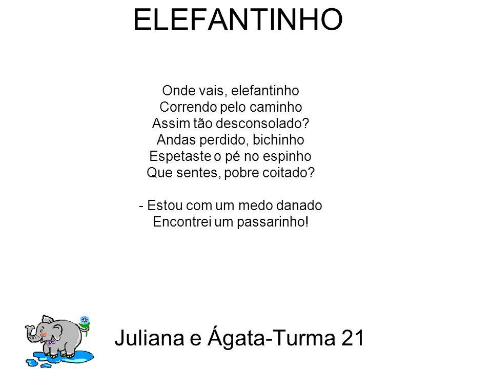 ELEFANTINHO Juliana e Ágata-Turma 21 Onde vais, elefantinho Correndo pelo caminho Assim tão desconsolado.