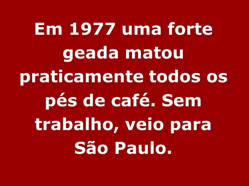 Em 1977 uma forte geada matou praticamente todos os pés de café. Sem trabalho, veio para São Paulo.