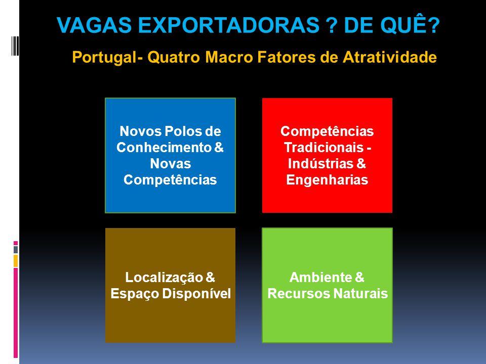 Novos Polos de Conhecimento & Novas Competências Competências Tradicionais - Indústrias & Engenharias Ambiente & Recursos Naturais Localização & Espaço Disponível VAGAS EXPORTADORAS .