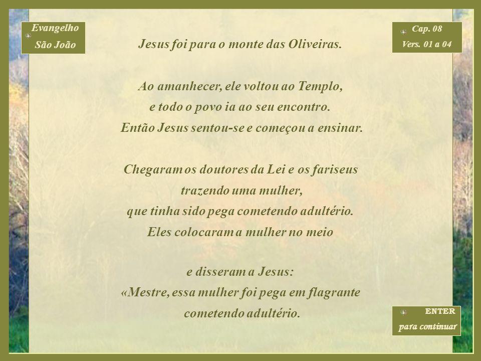 Evangelho São João Cap. 08 Vers. 01 a 59 ENTER para continuar