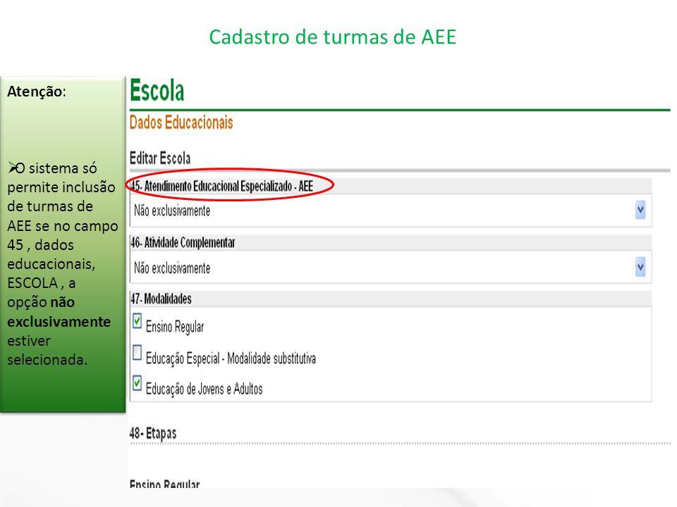 Atenção:  O sistema só permite inclusão de turmas de AEE se no campo 45, dados educacionais, ESCOLA, a opção não exclusivamente estiver selecionada.