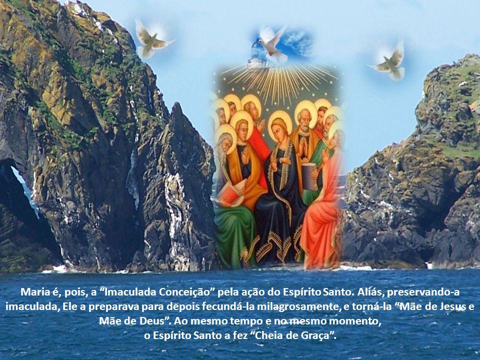 Maria é, pois, a Imaculada Conceição pela ação do Espírito Santo.