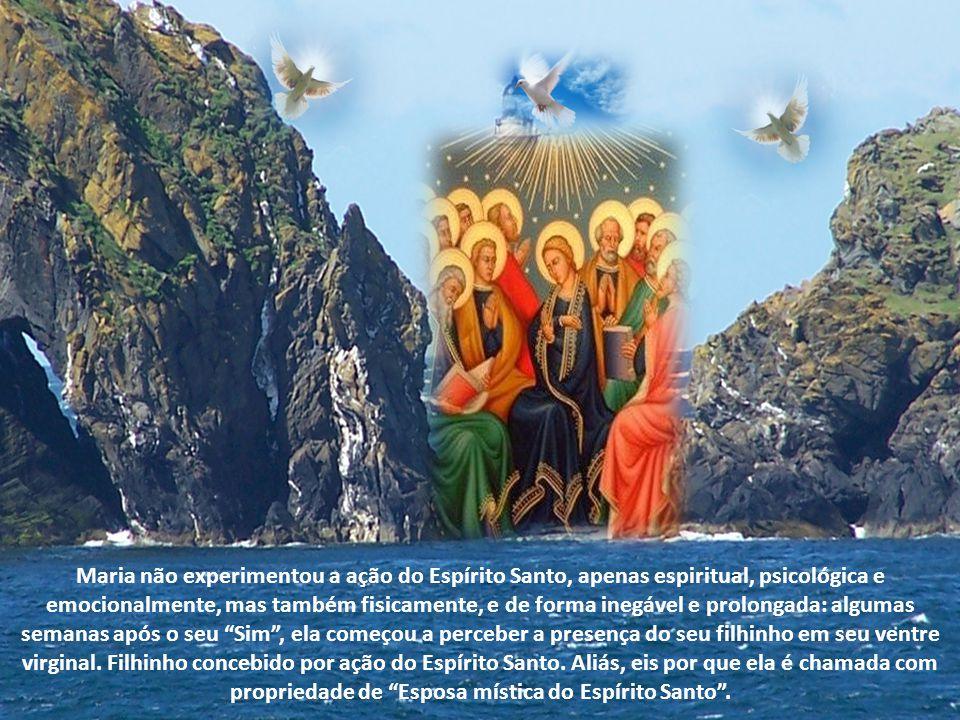 """A vinda do Salvador da humanidade. Cheia de graça, Maria dá o seu consentimento: """"Eis a servidora do Senhor. Faça-se em mim segundo a tua palavra"""".(Lc"""