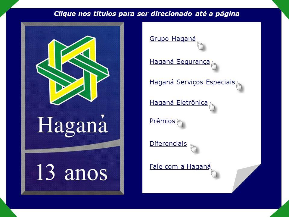 Empresa O Grupo Haganá nasceu há 12 anos.