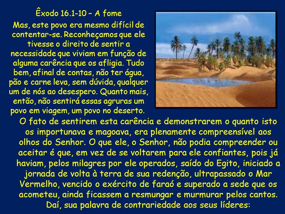 Diante de mais esta reclamação, Moisés e Arão mais uma vez se colocam diante do Pai.