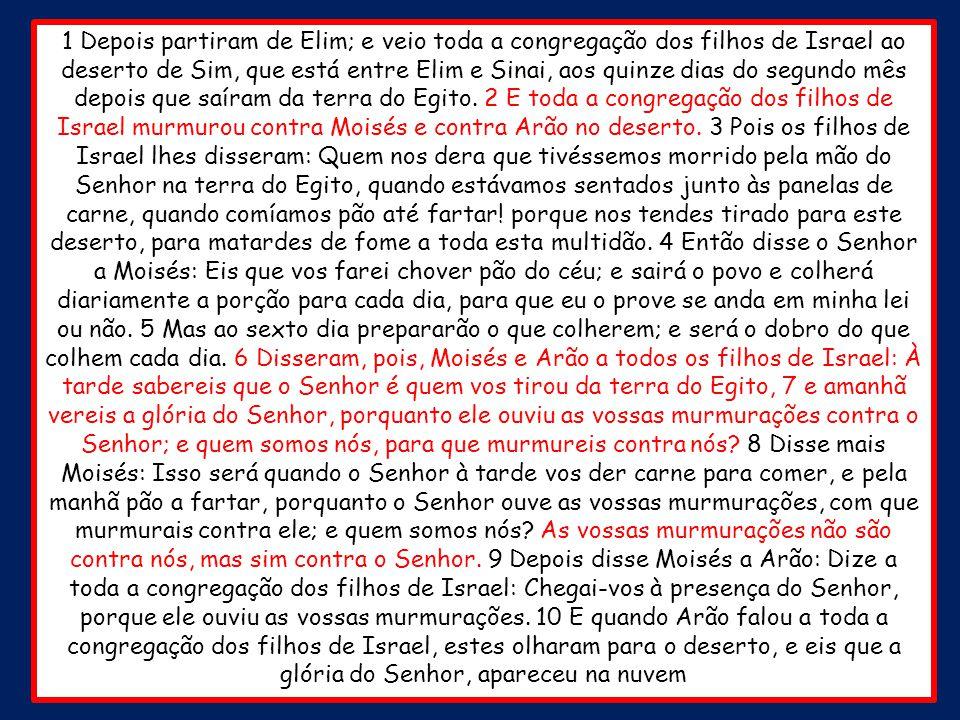 Êxodo 16.11-36 Codornizes e maná O terceiro milagre atende a necessidade material do povo de Deus.