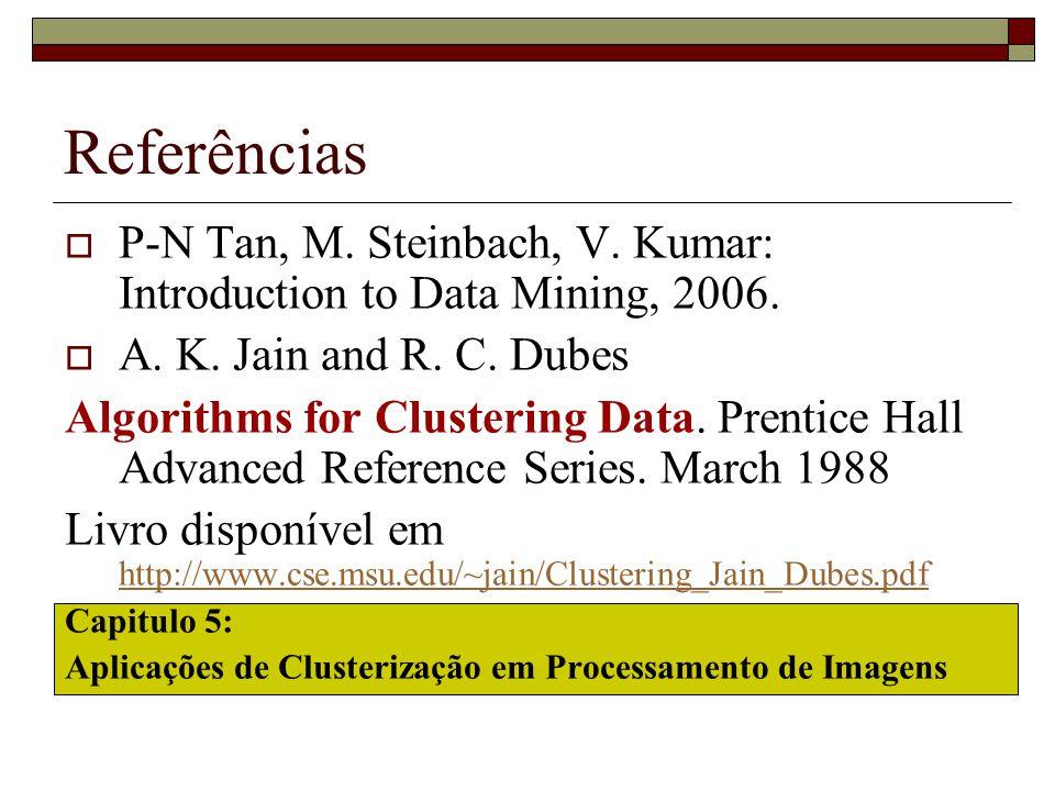 Referências  P-N Tan, M. Steinbach, V. Kumar: Introduction to Data Mining, 2006.  A. K. Jain and R. C. Dubes Algorithms for Clustering Data. Prentic