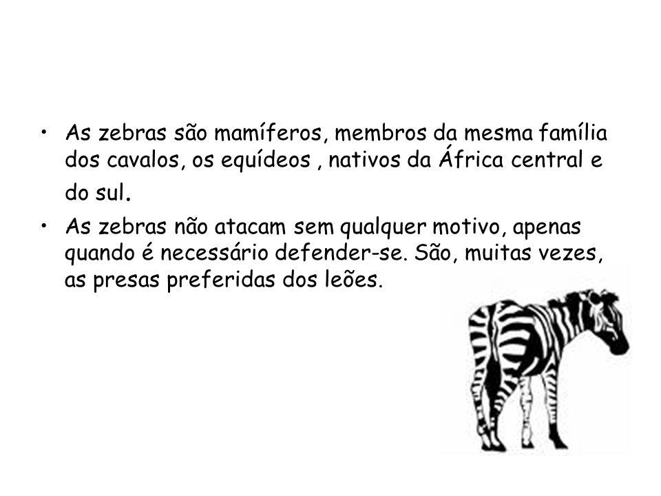 •As zebras são mamíferos, membros da mesma família dos cavalos, os equídeos, nativos da África central e do sul. •As zebras não atacam sem qualquer mo