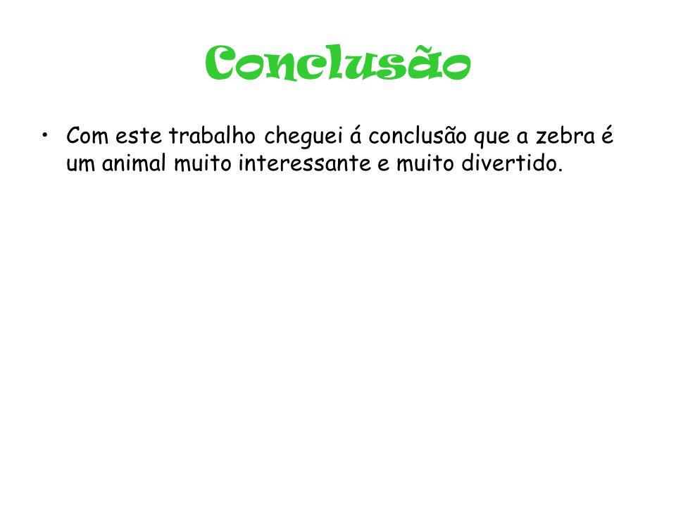 Conclusão •Com este trabalho cheguei á conclusão que a zebra é um animal muito interessante e muito divertido.