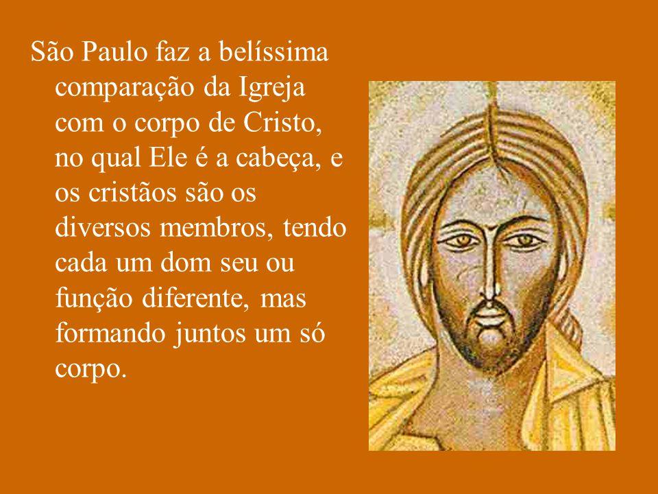 São Paulo faz a belíssima comparação da Igreja com o corpo de Cristo, no qual Ele é a cabeça, e os cristãos são os diversos membros, tendo cada um dom