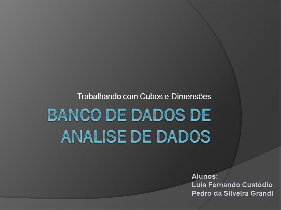 Trabalhando com Cubos e Dimensões Alunos: Luís Fernando Custódio Pedro da Silveira Grandi