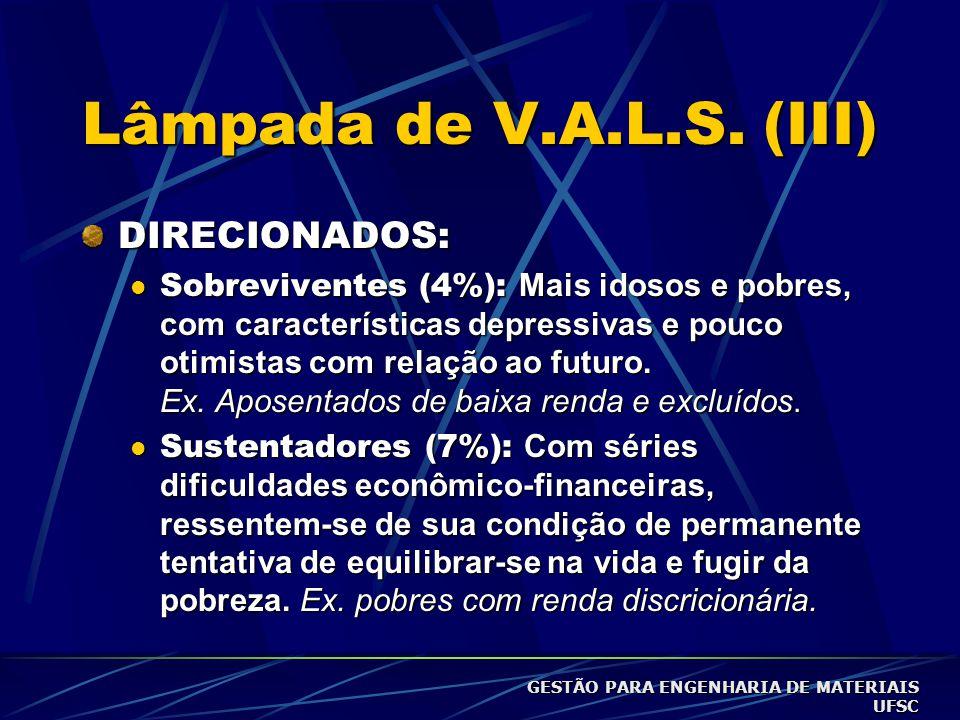 Lâmpada de V.A.L.S. (II) DIRECIONADOS (Sustentadores e Sobreviventes): comportamento moldado mais por necessidades básicas do que por escolha; DIRIGID