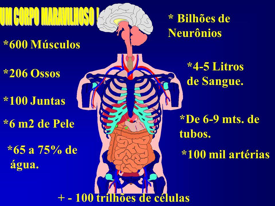 O Fumo e a Hipertensão