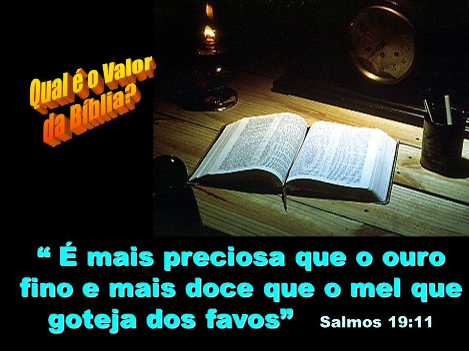 """""""Porque a profecia nunca foi produzida por vontade dos homens, mas homens santos da parte de Deus falaram movidos pelo Espírito Santo."""" """"Porque a prof"""