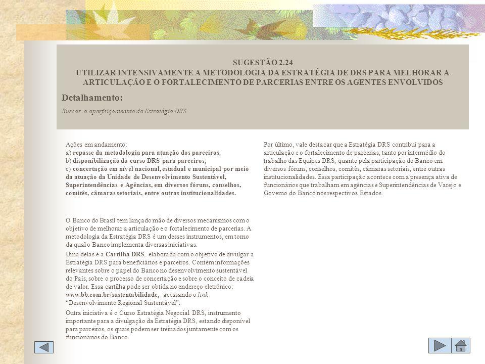 Ações em andamento: a) repasse da metodologia para atuação dos parceiros, b) disponibilização do curso DRS para parceiros, c) concertação em nível nac