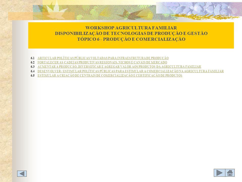 WORKSHOP AGRICULTURA FAMILIAR DISPONIBILIZAÇÃO DE TECNOLOGIAS DE PRODUÇÃO E GESTÃO TÓPICO 6 - PRODUÇÃO E COMERCIALIZAÇÃO 6.1 ARTICULAR POLÍTICAS PÚBLI