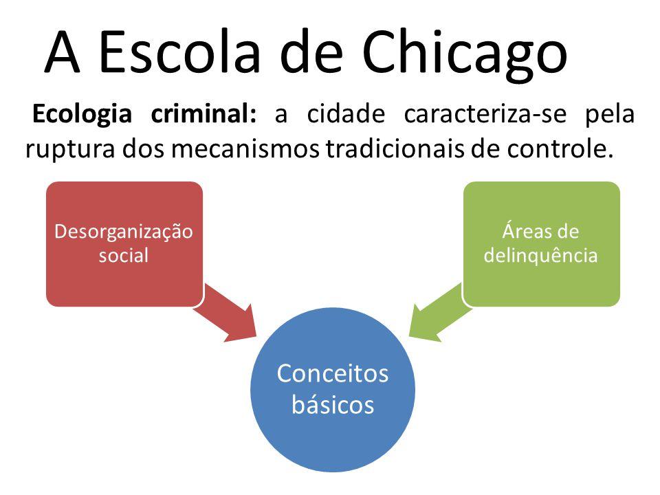 A Escola de Chicago Ecologia criminal: a cidade caracteriza-se pela ruptura dos mecanismos tradicionais de controle. Conceitos básicos Desorganização