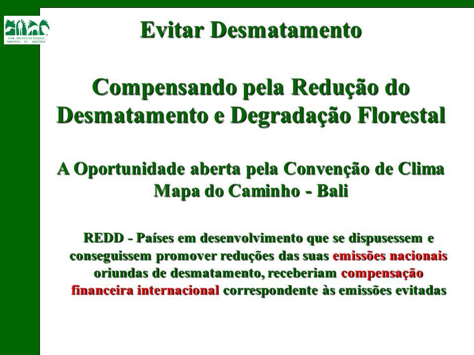 Evitar Desmatamento Compensando pela Redução do Desmatamento e Degradação Florestal A Oportunidade aberta pela Convenção de Clima Mapa do Caminho - Ba